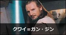 クワイガン width=
